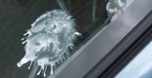 Vogelpoep op autolak